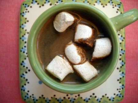 hot cocoa with cinnamon, ancho chile powder, and nutmeg
