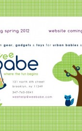 Book Signing THIS SUNDAY at Wee Babe in Williamsburg!