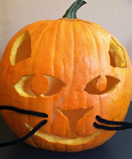 cat jack o'lantern