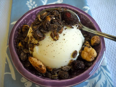 Nutty Chocolate-Cherry Granola