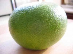 The Tingly Fruit: Pomelo