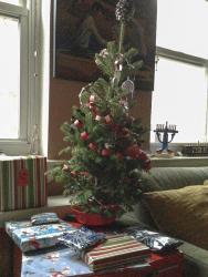 Oh, Christmas Tree?